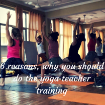 6 reasons, why you should do the yoga teacher training